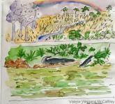 Sanibel Gator